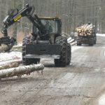 Holzfällen im Winter